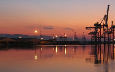 DP World Limassol Services Two Vessels in One Day